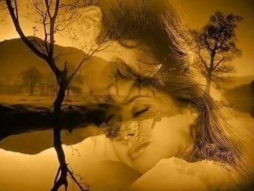 Que significa soñar con hacer el amor